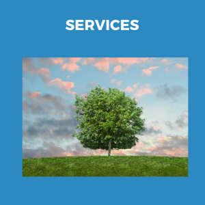 Services header for front page